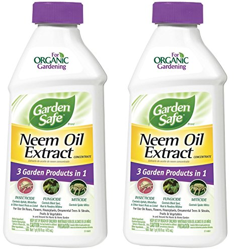 Garden Safe Neem Oil Extract Concentrate (HG-83179), 2 Pack (16 fl oz) by Garden Safe