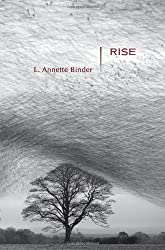 Rise: Stories (Mary McCarthy Prize in Short Fiction)
