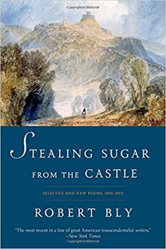 Image result for stealing sugar from the castle robert bly