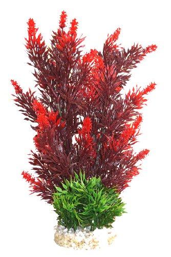 Sydeco Aquariumpflanze Aqua Bouquet Plant, rot, Höhe 23 cm