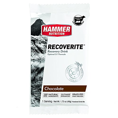 Hammer Nutrition Recoverite Recovery Fuel, Flavor Chocolate (6 Count of Single Packets)