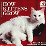 img - for How Kittens Grow (Read With Me) book / textbook / text book