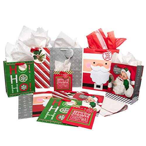 Hallmark (12 Pack) Assorted Christmas Winter Holiday Glitter Gift Bags and Tissue for Kids Adults (Felt Gift Tags)