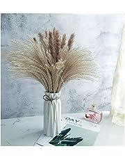 Bzuibaz Gedroogde pampasgras, decoratieve plant, 65 stuks, natuurlijk pluizig pampasgras, droogbloemen, boeket set voor boho-decoratie, woonkamer, modern, decoratie, bruiloft en festival, Kerstmis