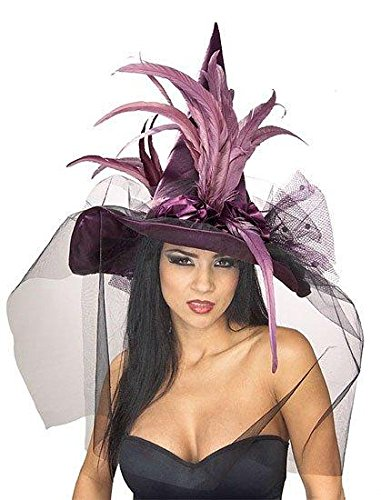 Rubie's Women's Witch Hat with Feathers and Veil