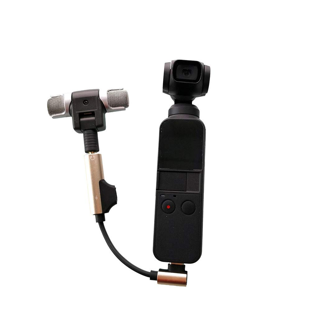 Type C to 3.5mm Audio Adapter External Wireless Microphone For DJI Osmo Pocket Gold