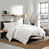 Oversized Comforters Eddie Bauer Striped Damask 700 Fill Power Oversized King Cotton Goose Down Comforter, White