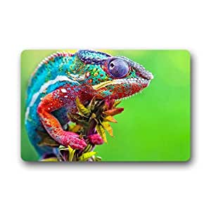 Magical Color Change Chameleon Background Doormat/Gate Pad for outdoor,indoor,bathroom use!23.6inch(L) x 15.7inch(W)