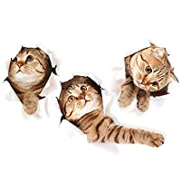 3D Wall Decals Stickers Vivid Decors Murals (Cat) | Easy to Peel Easy to Stick Safe on Painted Walls | Cute Catty Decor Posters for Nursery Room, Toilet, Kitchen, Offices etc. (40X60CM) Guang-T
