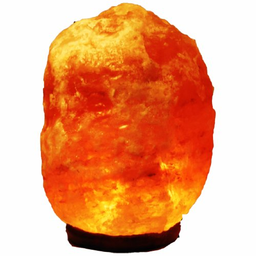 Natural Himalayan Salt Lamp Crystal Air Purifier 12'' 3XL 22~30 Lbs. by FRP Structural