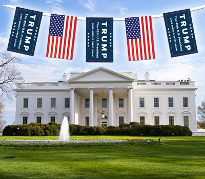 Vote Trump Bunting Banner Yard Sign Garden Flag, 26-Feet Long (12-Inch-by-18-Inch for Each Flag)