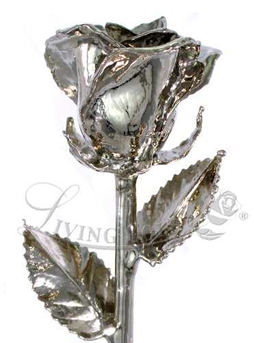 Real Rose Dipped in Platinum - Venus Rose (12'' Open Bud) by Living Gold