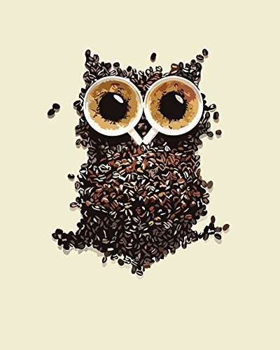 Paint by Numbers Diy Painting,Paint by Number Kit dw0006-animal Coffee Bean Owl Wooden Framed 16