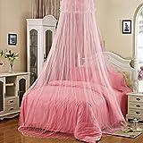 Gilroy elegante encaje malla Bed Canopy Ronda mosquitero de insectos, Rosado
