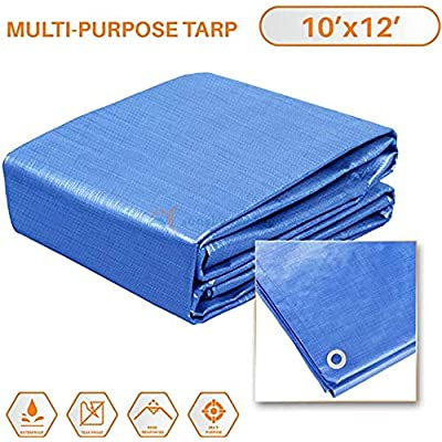 Sunshades Depot 10x12 Feet General Multi-Purpose 5 Mil Waterproof Blue Multi Purpose Waterproof Poly Tarp Cover 5 Mil Thick 8x8 Weave