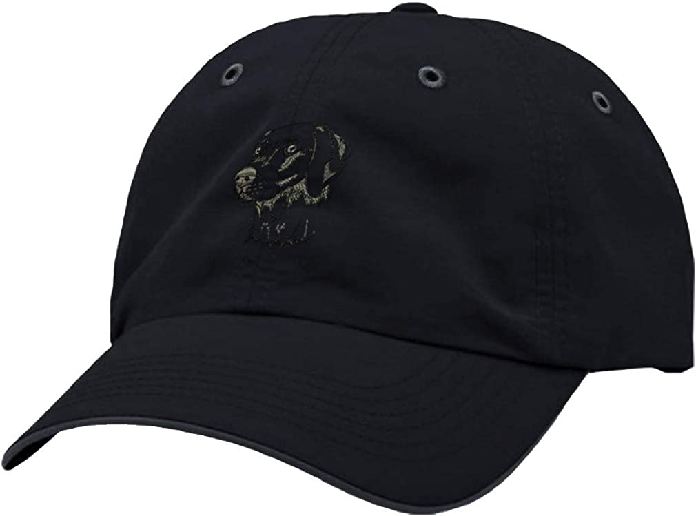 Custom Richardson Running Cap Weimaraner C Embroidery Dog Name Polyester Hat