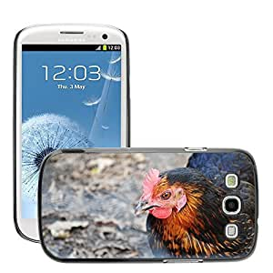Super Stella Slim PC Hard Case Cover Skin Armor Shell Protection // M00146542 Hen Nature Animal Chicken // Samsung Galaxy S3 S III SIII i9300