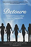 img - for Detours: Unexpected Journeys of Hope Conceived from Infertility book / textbook / text book