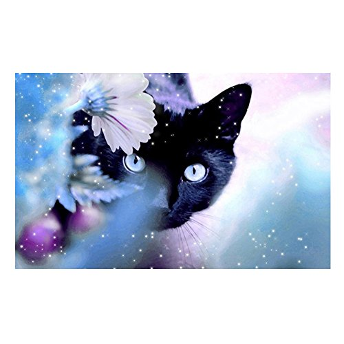 Awakingdemi 5D DIY Diamond Painting, Diamond Embroidery DIY Needlework Cross Stitch Full Square Rhinestones Painting for Home Decor (Black Cat)