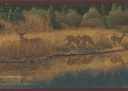 Deer Drinking Water From Forest River Vintage Wallpaper Border Retro Design Roll 15 X