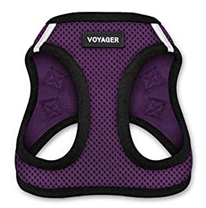 "Voyager by Best Pet Supplies - All Weather Step-in Mesh Dog Harness with Padded Vest, (Purple Base), Large (Chest: 18"" - 21"")"