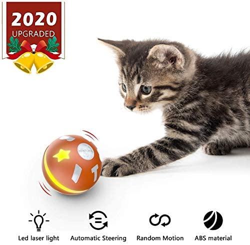 Juguete automático para gato/perro, plumas para mascotas, juguetes para gatos, juguetes para mascotas, bolas malvadas,