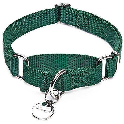 Dazzber Martingale Collar with Metal Dog Tag, Heavy Duty Nylon Dog Collar, Large, 1 Inch Wide, Dark Green