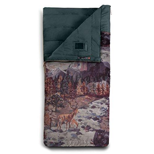 The North Face Homestead Twin 20F/-7C Sleeping Bag (Darkest Spruce Yosemite Sofa Print/Darkest Spruce, Regular/Right H.) [並行輸入品] B07F4RQ5GZ