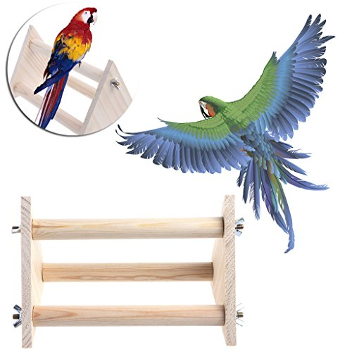 Onpiece Funny Parrot Bird Perch Stand Play Toys Gym Wooden Activity Table Top Playstand (Tabletop Playstand)