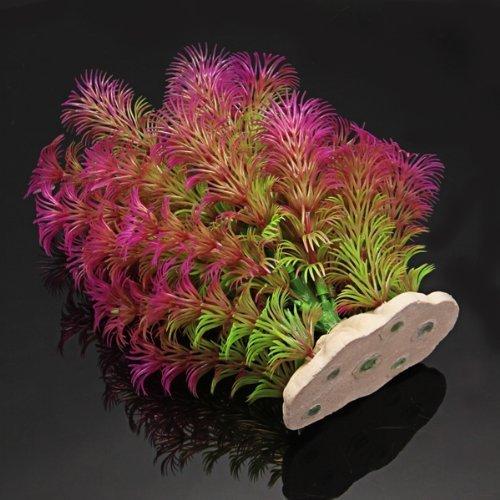 Planta Plástico Decoración para Acuario Pecera Color Púrpura Verde: Amazon.es: Jardín