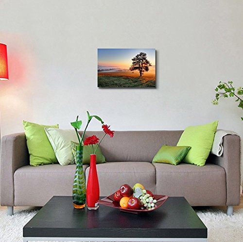 Beautiful View Scenery of a Tree on Meadow at Sunset Wall Decor ation