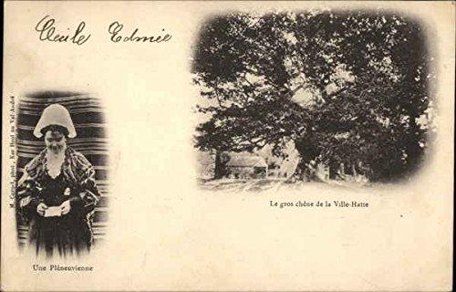 Woman wearing Traditional Costume of Pleneuf Pleneuf, France Original Vintage Postcard