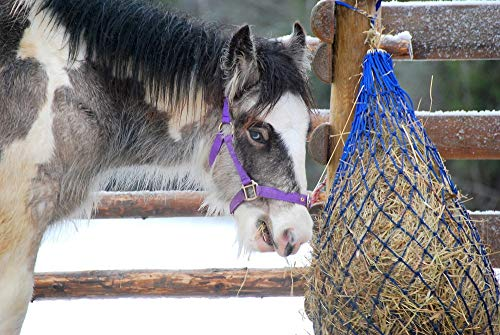 Southwestern Equine Ultra Slow Feeder Horse Hay Bag Extended Feeder Natural Grazing (1