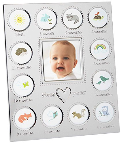 - Carter's Baby's First Year Animal Theme Silver Metal Month by Month Picture Frame, 9.75