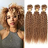 Wome Hair Remy Peruvian Curly Human Hair Bundles 3 Bundles #27 Honey Blonde