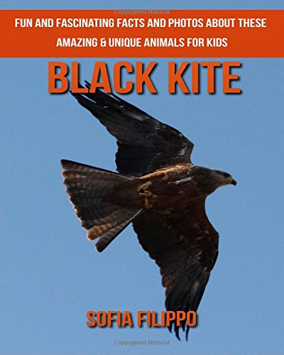 Download Black Kite: Fun and Fascinating Facts and Photos about These Amazing & Unique Animals for Kids PDF