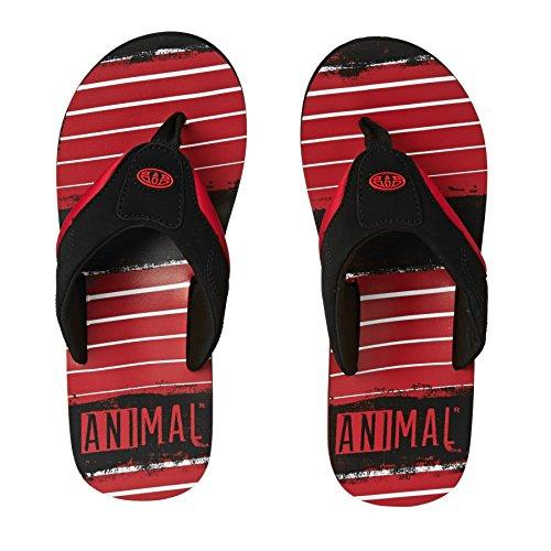 Animal - Chanclas con diseño Modelo Jekyl para hombre Rojo brillante