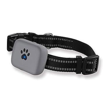 Amazon.com: STHDTD rastreador GPS para perros en tiempo real ...