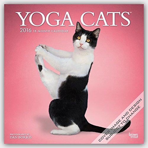 Yoga Cats 2016 Wall: Amazon.es: Inc Browntrout Publishers ...