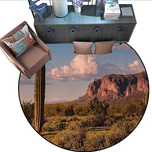 Saguaro Round Soft Area Rugs Mountain State Park with Non Spiral Sided Leaf Aleo Storage Landscape Photo Perfect for Any Room, Floor Carpet (67