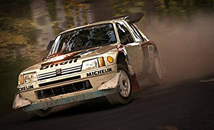 Dirt Rally (PS4): Amazon co uk: PC & Video Games