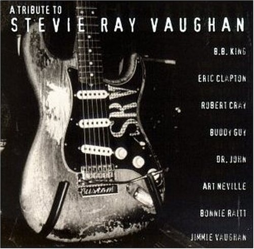 A Tribute To Stevie Ray Vaughan by Sony Legacy