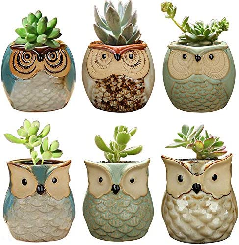 YLINGSU 2.5 Inch Owl Succulent Plants Pots Ceramic Set, Cactus Plant Pot,Mini Flower Pot, with A Hole Perfect owl Gifts 6 Pack