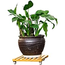 "RAIN QUEEN Natural Bamboo Plant Stand, Movable Outdoor Plant Caddy - Indoor Plant Dolly, Square Plant Roller with Wheels, Holds Potted Containers up to 10 inches and 50 lbs 10"" x 10"""