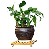 RAIN QUEEN Natural Bamboo Plant Stand, Movable Outdoor Plant Caddy - Indoor Plant Dolly, Square Plant Roller with Wheels, Holds Potted Containers up to 10 inches and 90 lbs 10'' x 10''