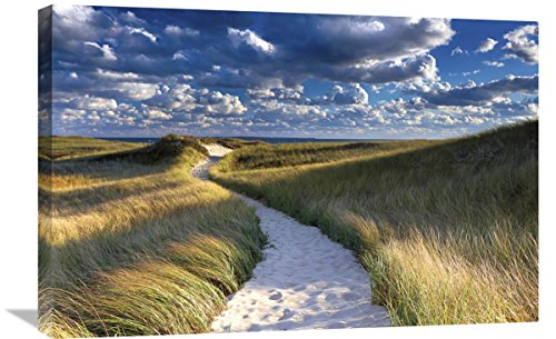 Global Gallery Katherine Gendreau, Philbin Beach Path' Stretched Canvas Artwork, 30 x 20 by Global Gallery
