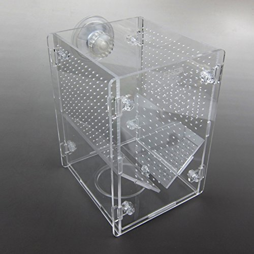 Alfie Pet by Petoga Couture - Johnson Hang-on Nursery Fish Tank with Isolation Breeding Hatchery - Size: Small