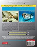 Winning Images with Any Underwater Camera: The