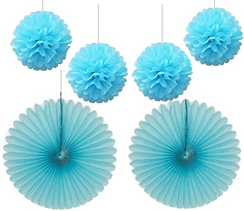 Ice Decoration (Joinwin 4pcs 10 inch Ice Blue Color Tissue Paper Pom Poms Mixed 2Pcs 16inch Ice Blue Tissue Paper Fans Hanging Decoration Party Baby Shower Decor (Ice Blue))