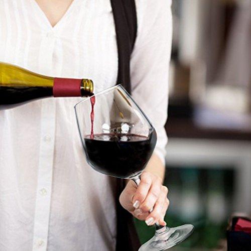 Paksh Novelty Italian Red Wine Glasses ...